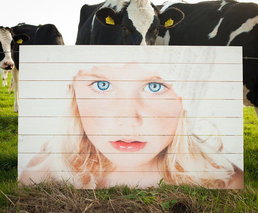 Portretfoto op whitewash vurenhout