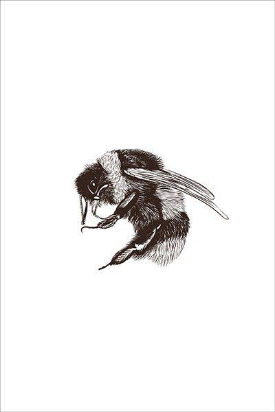 textielposter illustratie hommel insecten