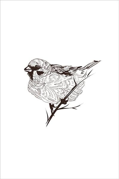 textielposter mus vogel illustratie