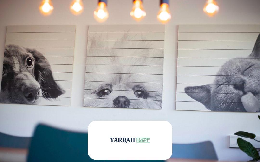 Wanddecoratie Yarrah